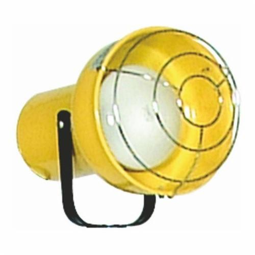 TPI DKLINC Modular Loading Dock Light, Incandescent, 300 W